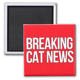 Avbrott av kattnyheternamagneten magnet