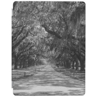 Aveny av Oaksgråtonen iPad Skydd