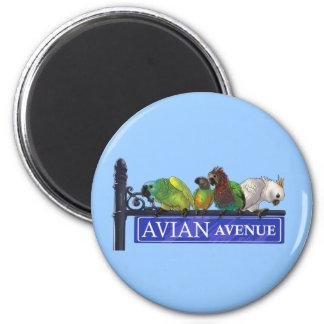 Avian avenymagneter magnet