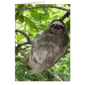 Avkopplad Sloth i natur Hälsningskort