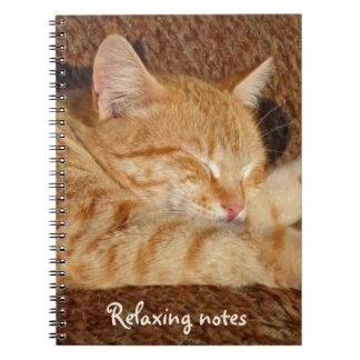 Avslappnande katt anteckningsbok