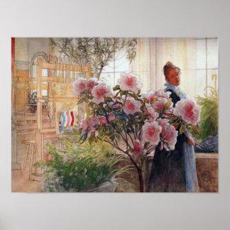 Azaleas av Carl Larsson Poster