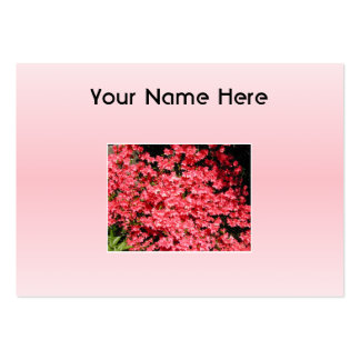 Azaleas. Nätt rosa Flowers. Set Av Breda Visitkort