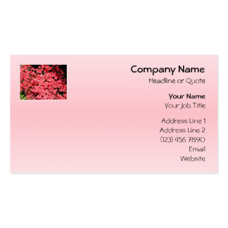 Azaleas. Nätt rosa Flowers. Set Av Standard Visitkort