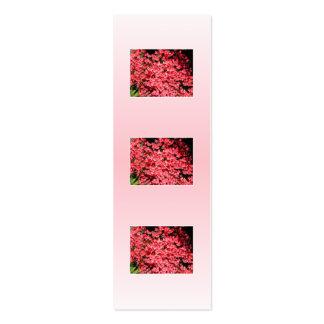 Azaleas. Nätt rosa Flowers. Visitkort Mall