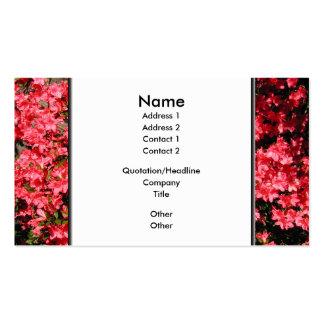 Azaleas. Nätt rosa Flowers. Visit Kort