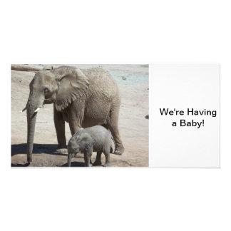 Babyelefant med mammor fotokort