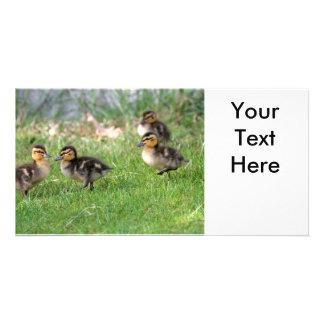 Babyen duckar fotoet fotokort