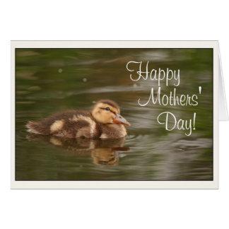Babyen duckar mors dag för Ducklingsdjurdjurliv Hälsningskort