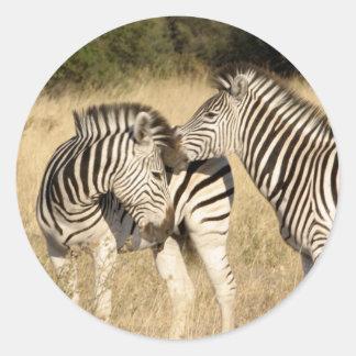 Babysebra och mamma runt klistermärke