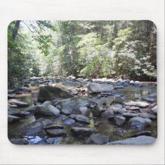Bäck och stenar i Tennessee Musmatta