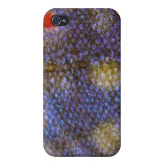 Bäckforelliphone case iPhone 4 cover