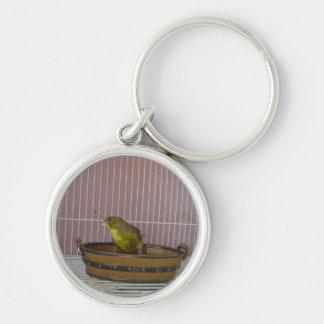 Badar det gammala tidbadet för kanariefågeln rund silverfärgad nyckelring