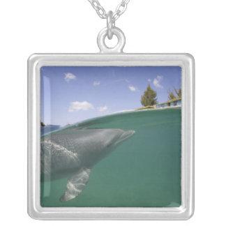 Bahamas storslagen Bahama ö, Freeport, fången Silverpläterat Halsband