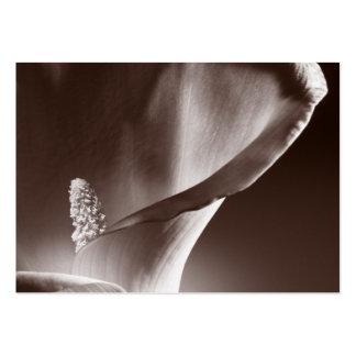 Bakgrund för svart för blomma för vitCallalilja Set Av Breda Visitkort