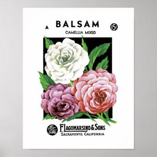 Balsam kärnar ur paketetiketten poster