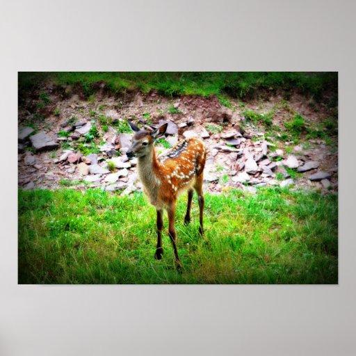 Bambi Affisch