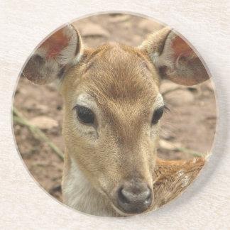 Bambi hjortunderlägg glasunderlägg