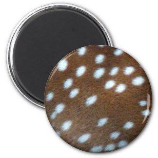 Bambi vit pricker på brun päls magnet rund 5.7 cm