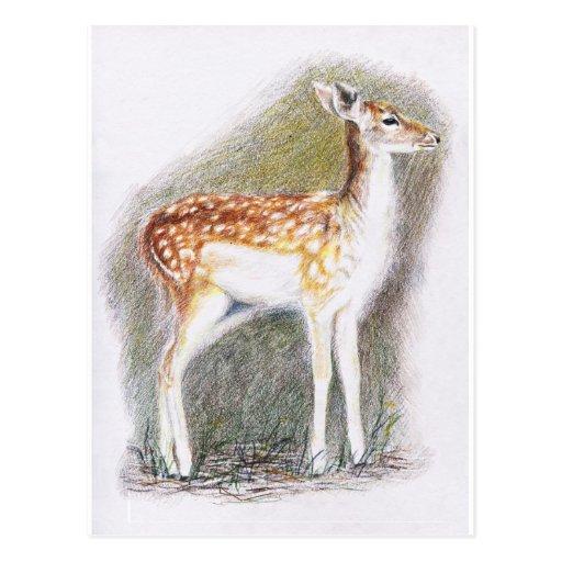 Bambi Vykort