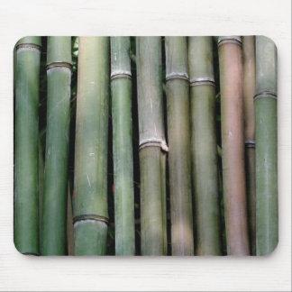 Bambu Musmatta