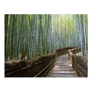 Bambuskog i Kyoto Vykort