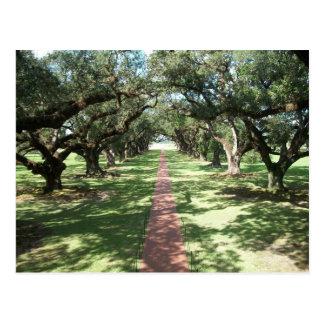 Bana för Oakgrändkoloni Vykort