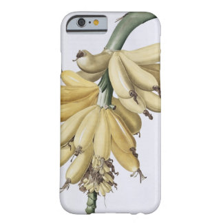 Banan 1816 barely there iPhone 6 skal