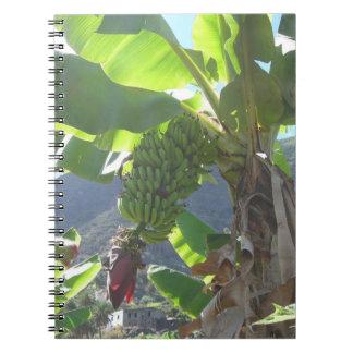 Bananträd med blommaanteckningsboken anteckningsbok med spiral
