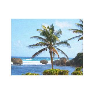 Barbados hav, palmträd, kickdefinitionfoto canvastryck