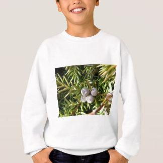 BärBaubles Tshirts