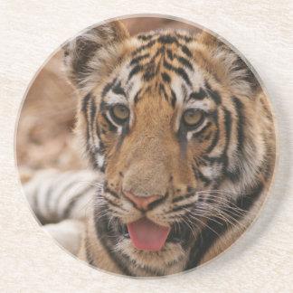 Barn ett av den kungliga Bengal tigern Underlägg