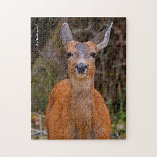 Barn Svart-Tailed leenden för en hjort Jigsaw Puzzles