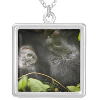 Barnslig berggorilla och hans mor silverpläterat halsband
