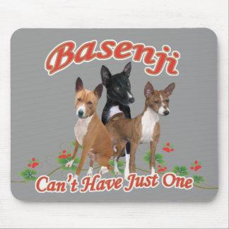 Basenji kan inte ha gåvor precis en musmatta