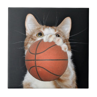 Basketkatten belägger med tegel kakelplatta
