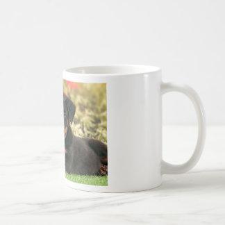 Bäst knoppar för Beauceron valpar Kaffemugg