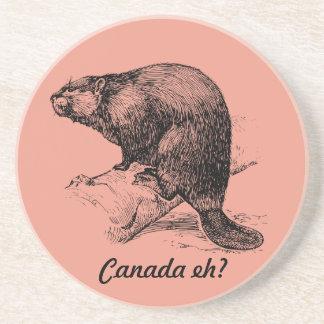 Bäver Kanada eh?  Fyrrutt Underlägg Sandsten