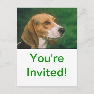 Beagle Inbjudan Vykort