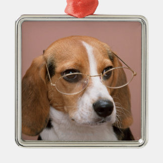 Beagle Julgransprydnad Metall