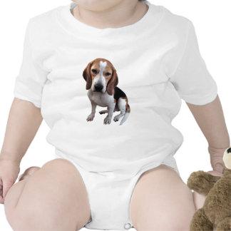 Beagle Sparkdräkter