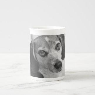 beagle tekopp