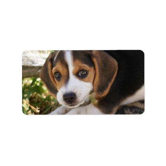 Beaglebabyhund Adressetikett