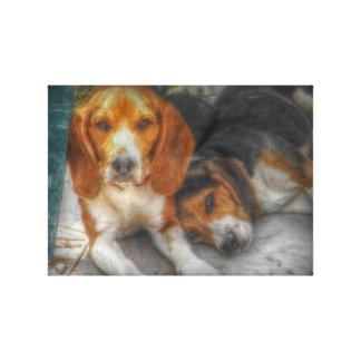 Beaglebröder Canvastryck