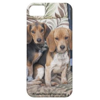 Beaglevalpiphone case iPhone 5 hud