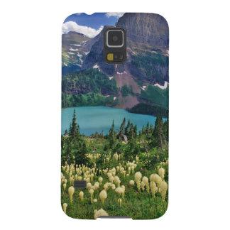 Beargrass ovanför Grinnell sjön i många Galaxy S5 Fodral