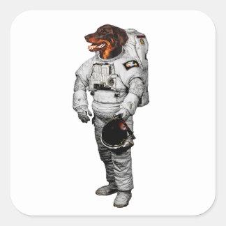 Beauceron astronautklistermärke fyrkantigt klistermärke