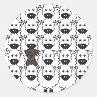 Beauceron i fåren runt klistermärke