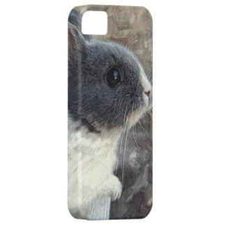 bebiskaniniphone case iPhone 5 hud