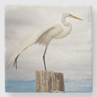 Begåvad strand för Egret | Fort Myers, Florida Stenunderlägg